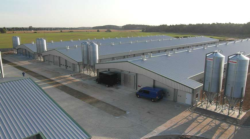Pig Farms Agriculture Steel Structures Frisomat Be